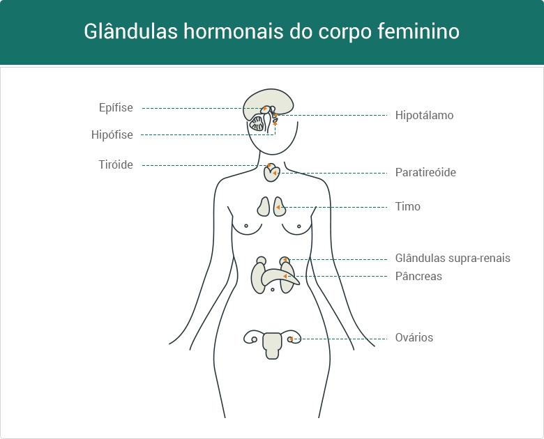 Dicas naturais para o equilíbrio das hormonas femininas