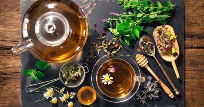 Quais são os chás que devemos tomar no inverno?