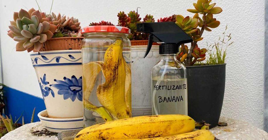 Fertilizante feito com cascas de banana