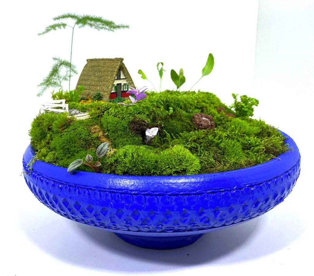 Como fazer um mini jardim e trazer a Natureza para dentro de casa
