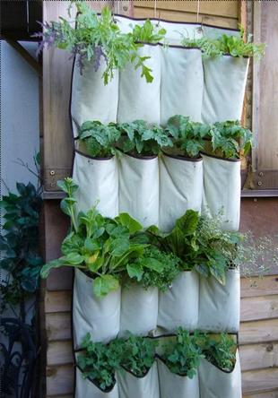 Dicas e ideias geniais para o vosso jardim