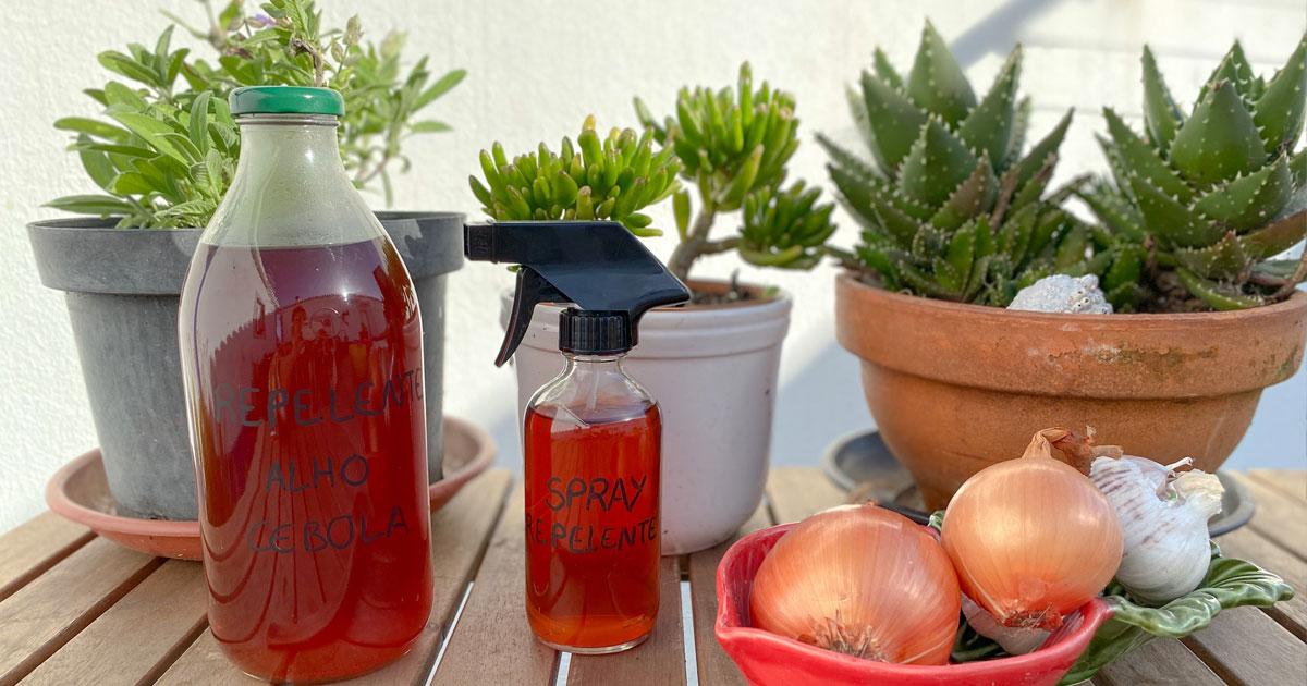 Sabiam que as cascas de alho e de cebola afastam as pragas no jardim?