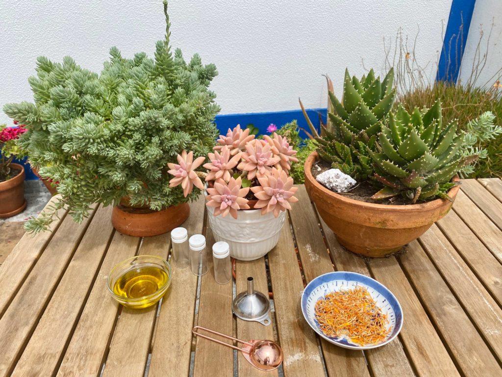 Aprenda a receita e quais os benefícios do óleo de calêndulas