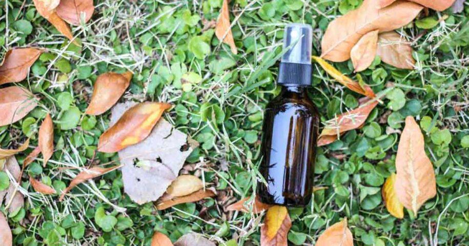 6 Receitas de sprays repelentes contra melgas e mosquitos