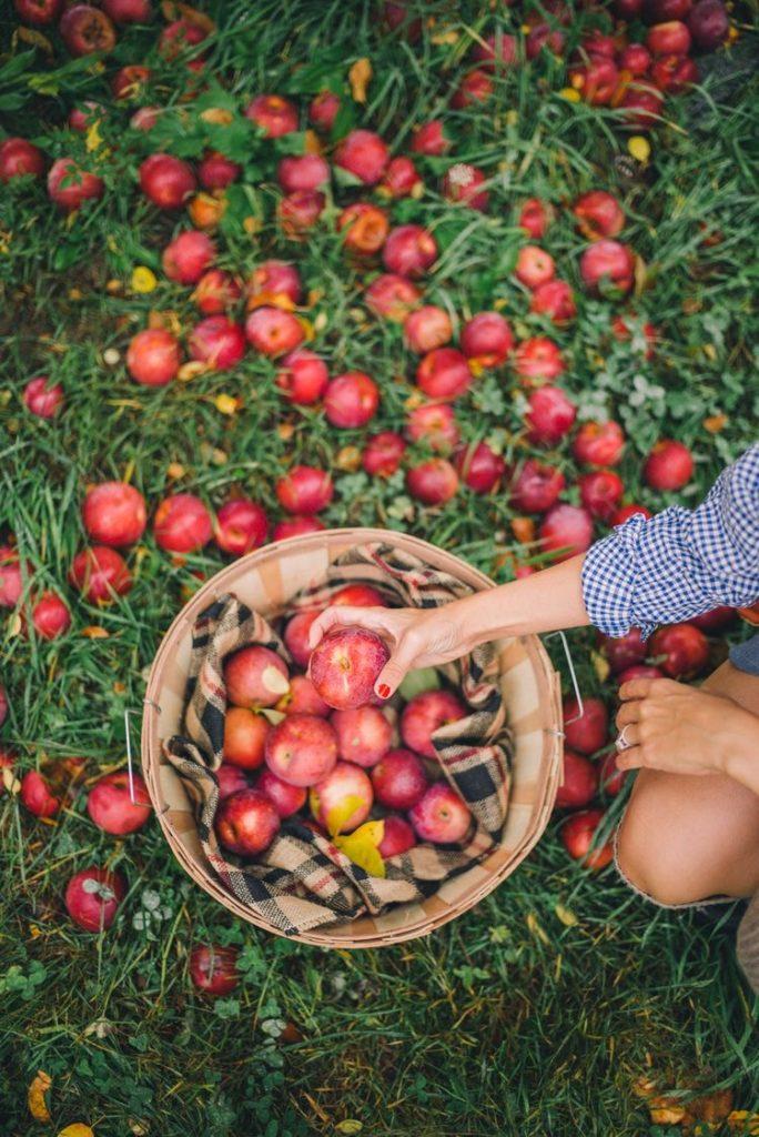 Aprenda a fazer vinagre de maçã saudável e natural
