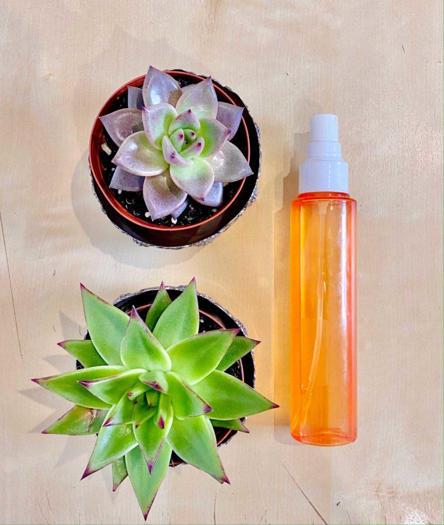 Este ambientador totalmente natural, caseiro e amigo do ambiente vai eliminar os maus odores da sua casa-de-banho!