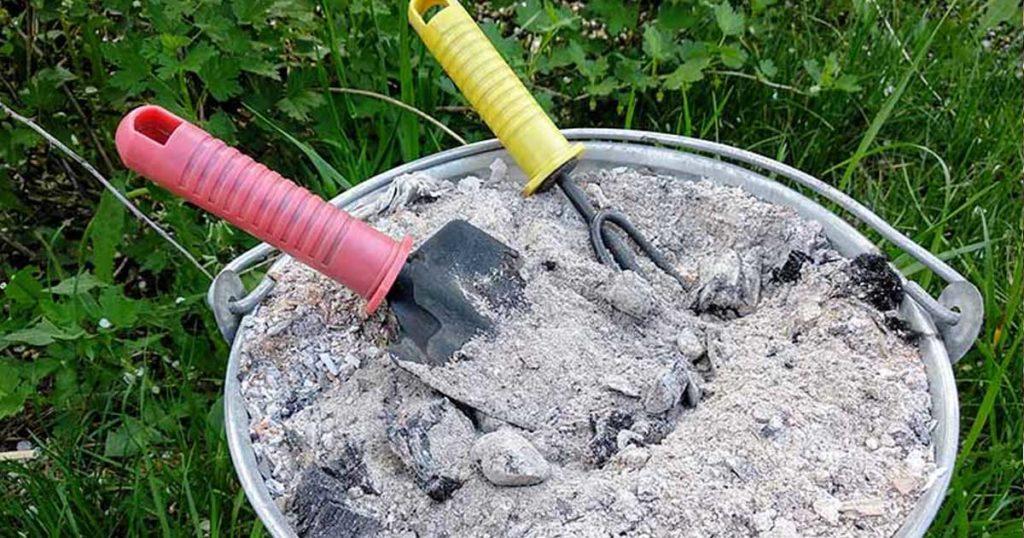 Utilidades da cinza de madeira na horta e no jardim