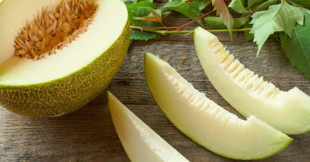 """Sabia que pode fazer """"leite"""" vegetal com sementes de melão?"""
