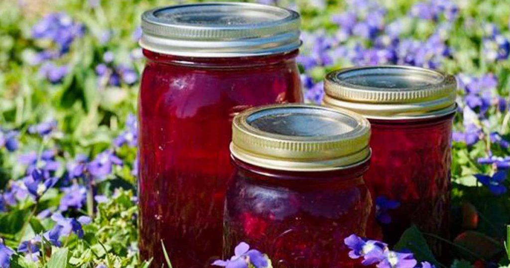 Aprenda a fazer uma geléia deliciosa feita com flores de violetas
