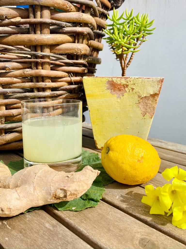 Aprenda a fazer água de gengibre para se proteger de bactérias e viroses