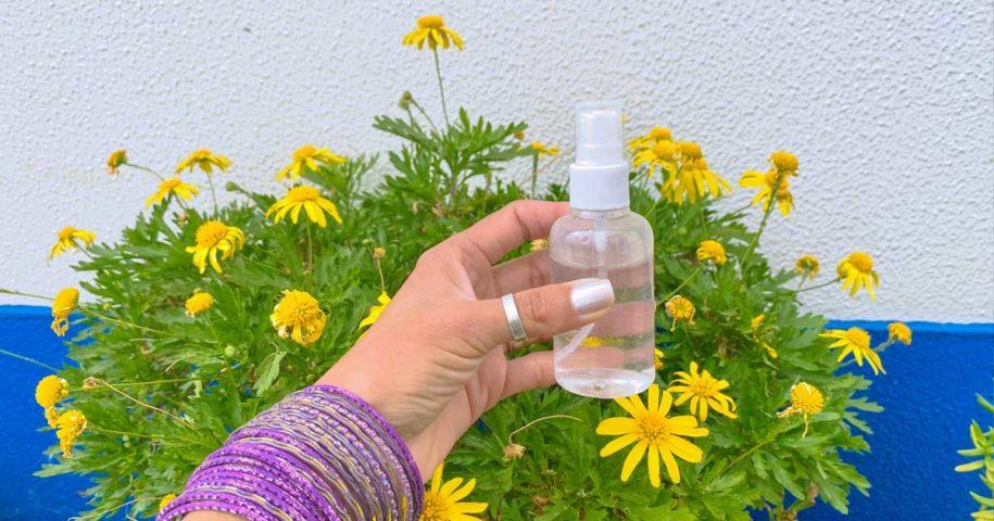 Aprenda a fazer um spray caseiro repelente de aranhas