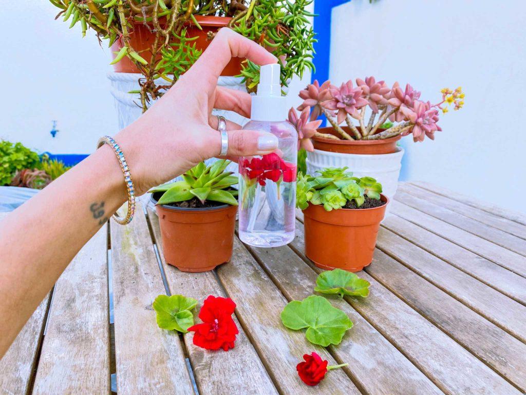Perfume de Primavera feito com flores de gerânios