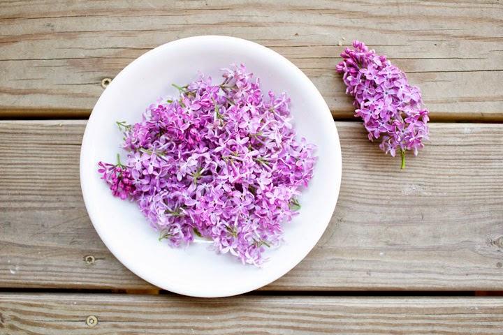 Aprenda a fazer óleo de flores de lilases para tratamentos naturais