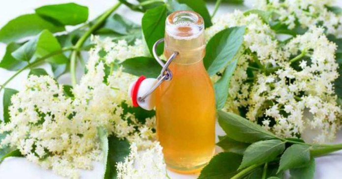 Aprenda a fazer licor de flores de sabugueiro com laranja