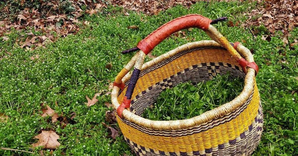 Morugem - Sabiam que esta erva é comestível e medicinal?